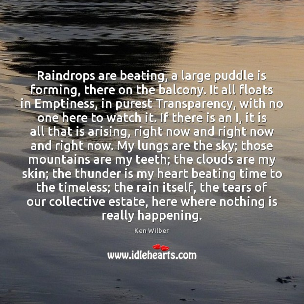 Raindrops are beating, a large puddle is forming, there on the balcony. Ken Wilber Picture Quote