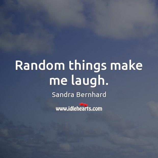 Random things make me laugh. Sandra Bernhard Picture Quote