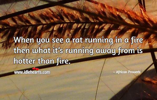 When you see a rat running in a fire then what it's running away from is hotter than fire. African Proverbs Image