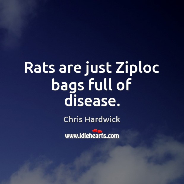 Rats are just Ziploc bags full of disease. Chris Hardwick Picture Quote