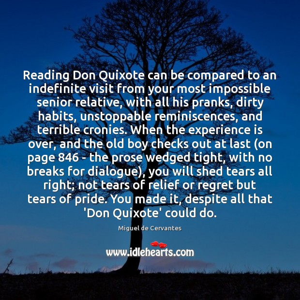 Reading Don Quixote can be compared to an indefinite visit from your Unstoppable Quotes Image