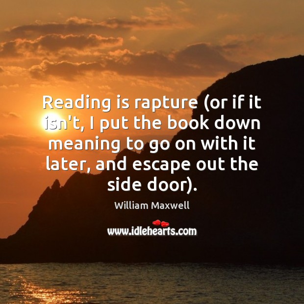 Reading is rapture (or if it isn't, I put the book down Image