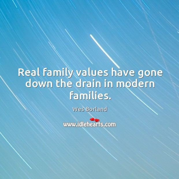Real family values have gone down the drain in modern families. Wes Borland Picture Quote