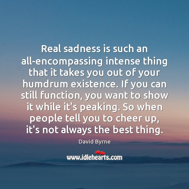 Real sadness is such an all-encompassing intense thing that it takes you David Byrne Picture Quote