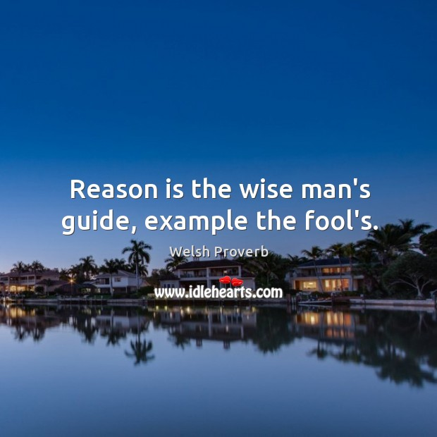 Reason is the wise man's guide, example the fool's. Welsh Proverbs Image