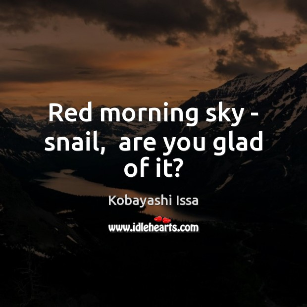 Red morning sky – snail,  are you glad of it? Image