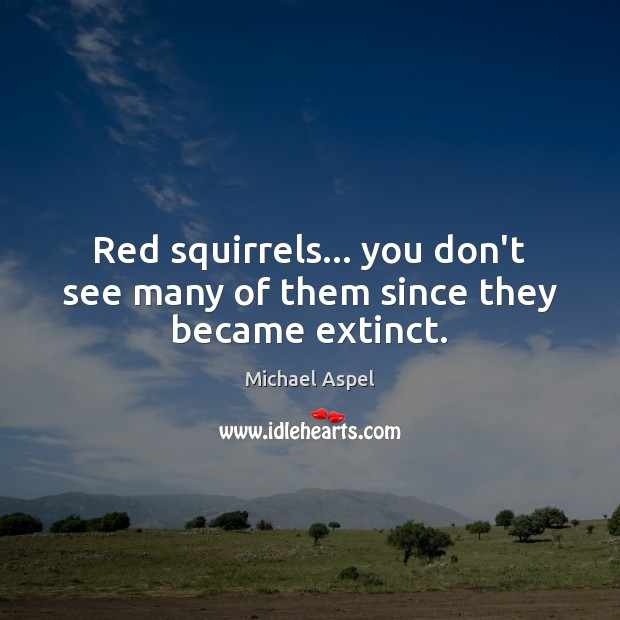 Red squirrels… you don't see many of them since they became extinct. Image
