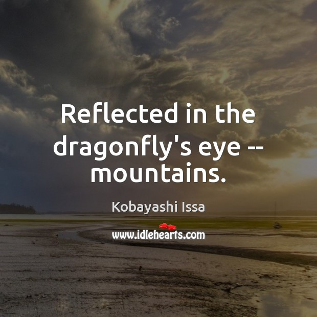 Reflected in the dragonfly's eye — mountains. Image