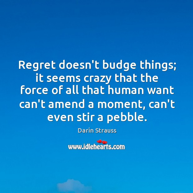 Regret doesn't budge things; it seems crazy that the force of all Darin Strauss Picture Quote