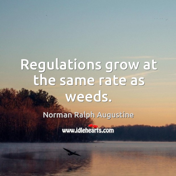 Regulations grow at the same rate as weeds. Norman Ralph Augustine Picture Quote