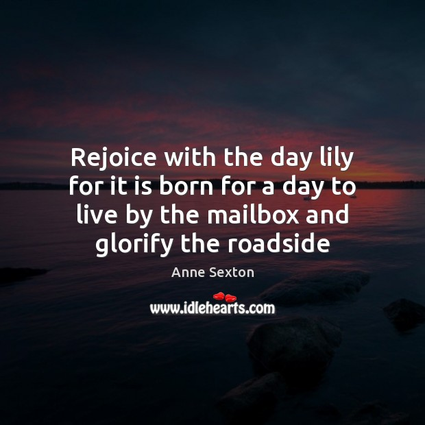 Rejoice with the day lily for it is born for a day Anne Sexton Picture Quote