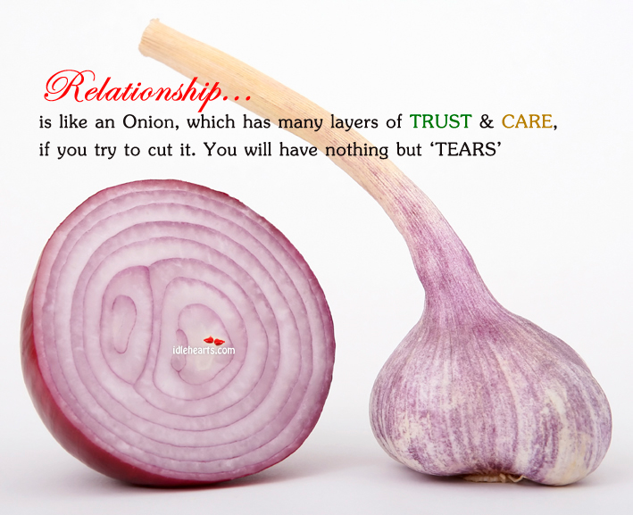 Relationships are like an onion - Unknown uses for an onion ...
