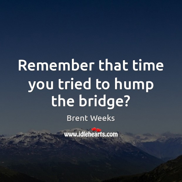 Remember that time you tried to hump the bridge? Image