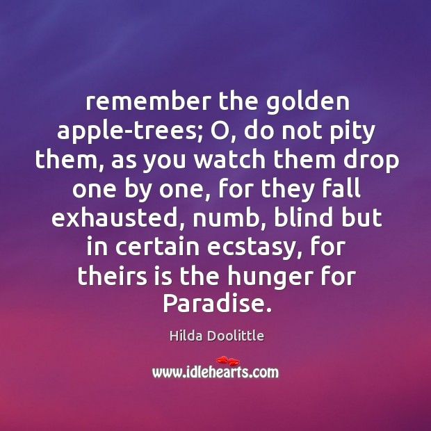 Remember the golden apple-trees; O, do not pity them, as you watch Hilda Doolittle Picture Quote