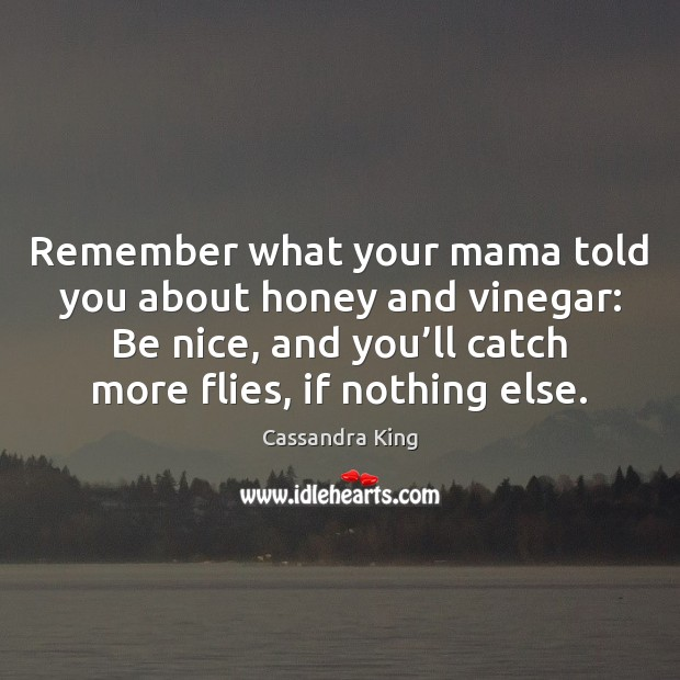 Remember what your mama told you about honey and vinegar: Be nice, Be Nice Quotes Image