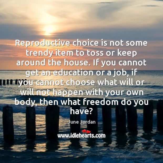 Image, Reproductive choice is not some trendy item to toss or keep around
