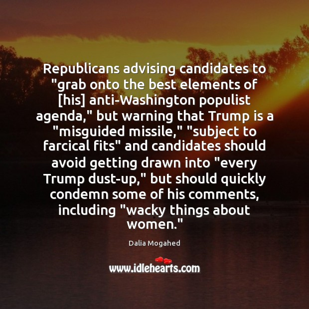 "Image, Republicans advising candidates to ""grab onto the best elements of [his] anti-Washington"
