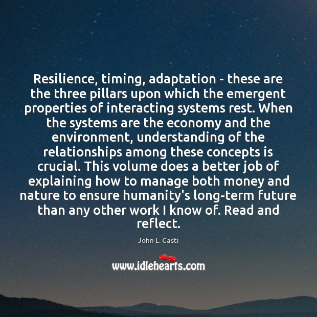 Resilience, timing, adaptation – these are the three pillars upon which the John L. Casti Picture Quote