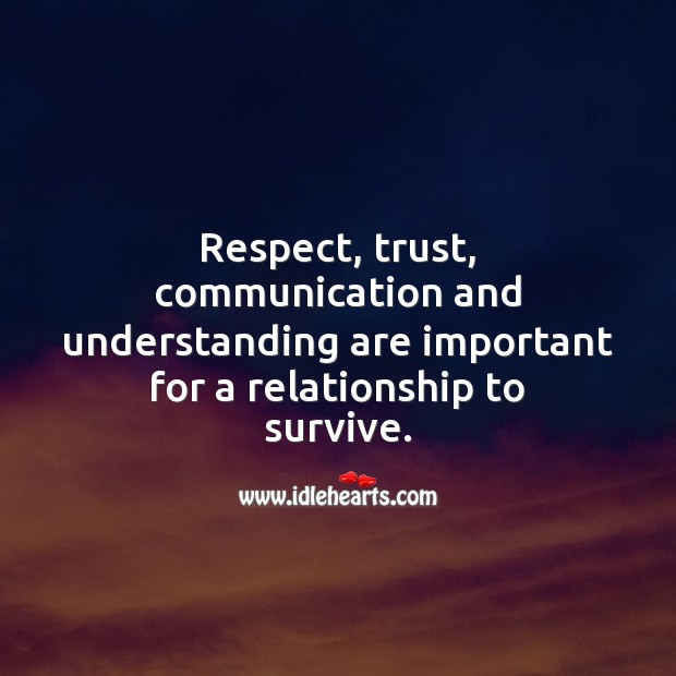 Respect, trust, communication and understanding are important for a relationship to survive. Image