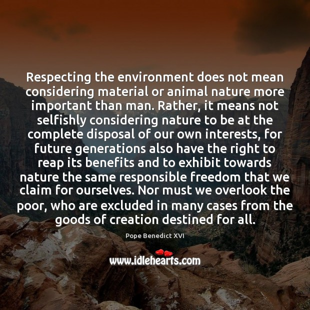 Respecting the environment does not mean considering material or animal nature more Image
