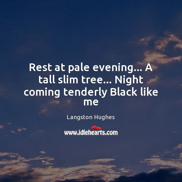 Rest at pale evening… A tall slim tree… Night coming tenderly Black like me Image