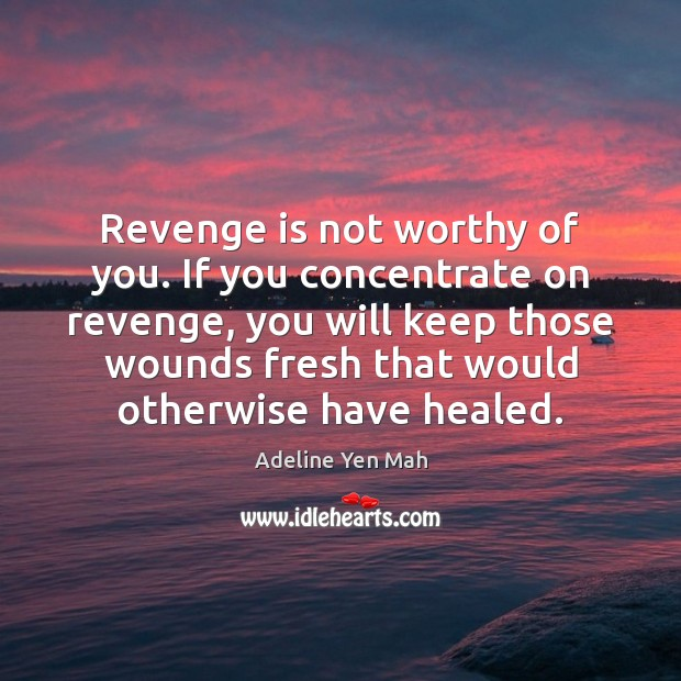 Image, Revenge is not worthy of you. If you concentrate on revenge, you