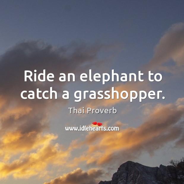 Ride an elephant to catch a grasshopper. Thai Proverbs Image
