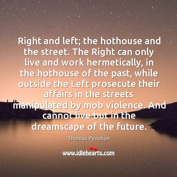 Image, Right and left; the hothouse and the street. The Right can only