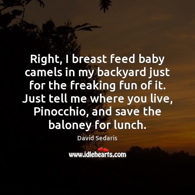 Image, Right, I breast feed baby camels in my backyard just for the