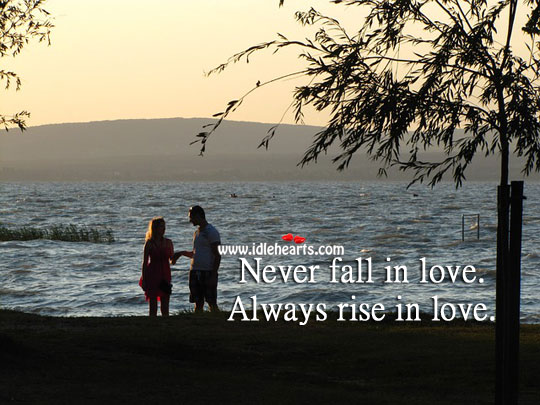 Image, Never fall in love. Always rise in love.