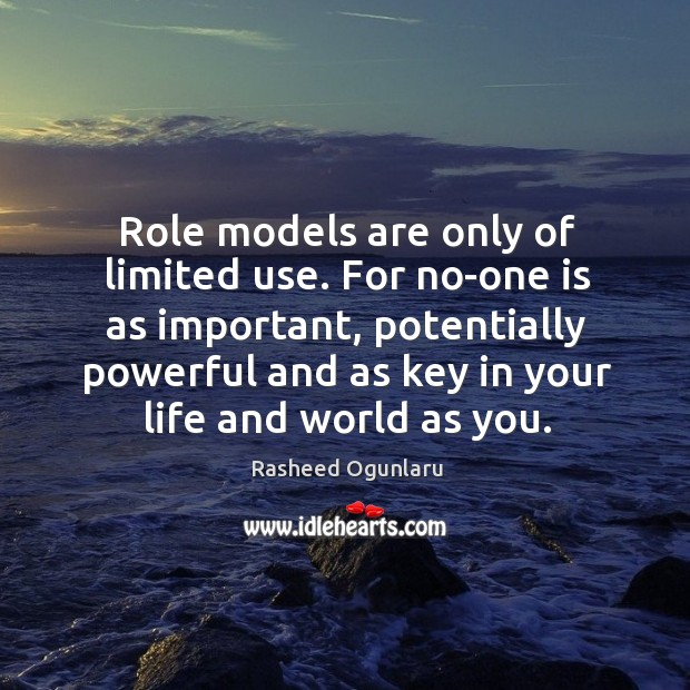 Role models are only of limited use. For no-one is as important, Image