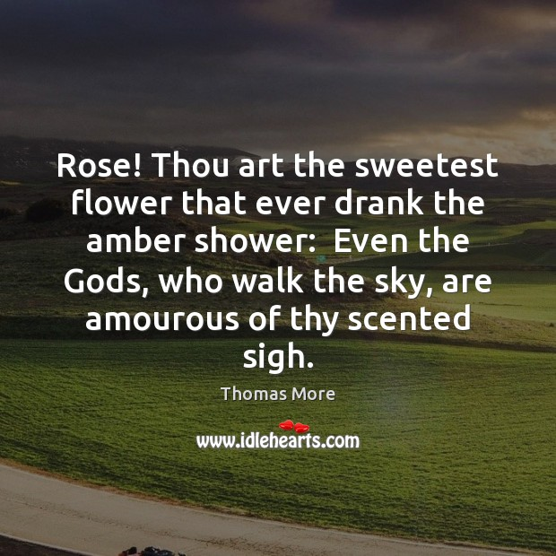 Rose! Thou art the sweetest flower that ever drank the amber shower: Thomas More Picture Quote
