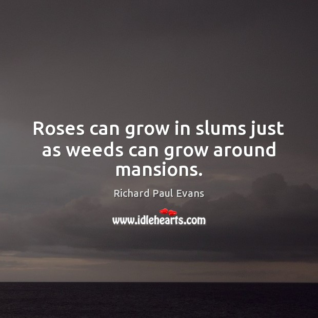 Roses can grow in slums just as weeds can grow around mansions. Image