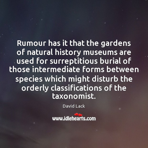 Rumour has it that the gardens of natural history museums are used David Lack Picture Quote