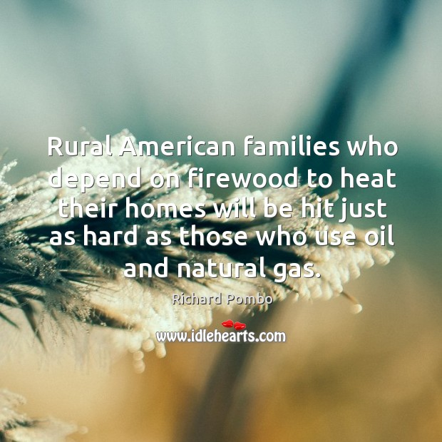 Rural american families who depend on firewood to heat their homes will be Image