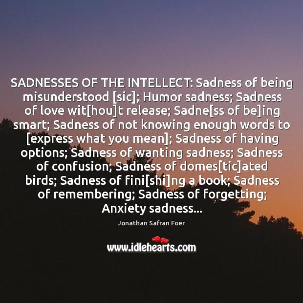 SADNESSES OF THE INTELLECT: Sadness of being misunderstood [sic]; Humor sadness; Sadness Image