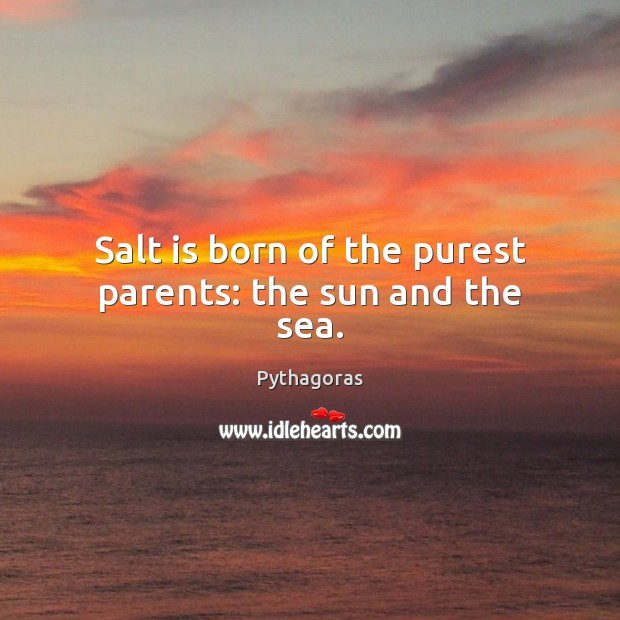 Image, Salt is born of the purest parents: the sun and the sea.