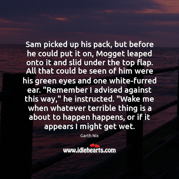 Sam picked up his pack, but before he could put it on, Image