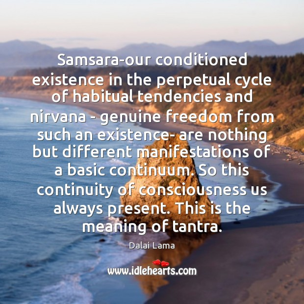Samsara-our conditioned existence in the perpetual cycle of habitual tendencies and nirvana Dalai Lama Picture Quote