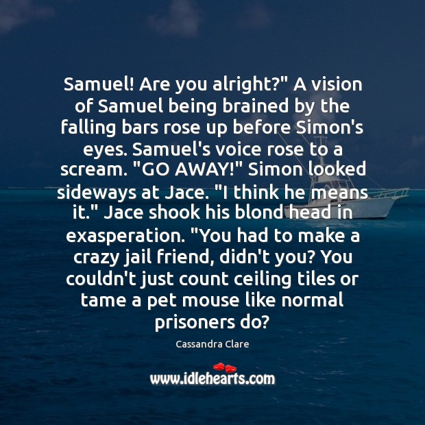 "Image, Samuel! Are you alright?"" A vision of Samuel being brained by the"