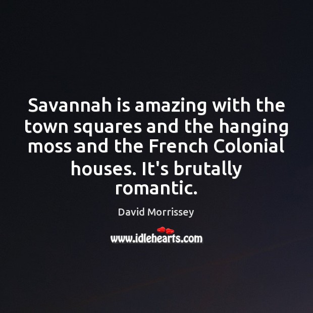 Image, Savannah is amazing with the town squares and the hanging moss and