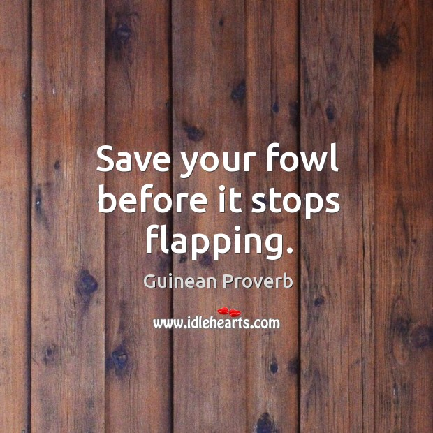 Save your fowl before it stops flapping. Guinean Proverbs Image