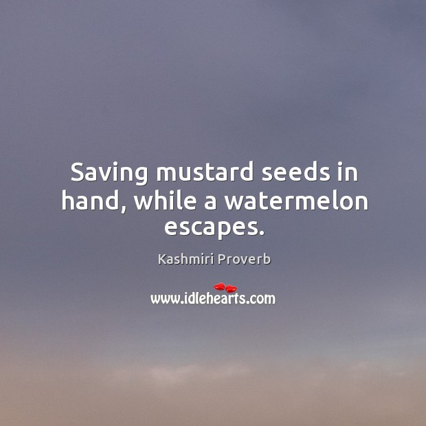 Saving mustard seeds in hand, while a watermelon escapes. Kashmiri Proverbs Image