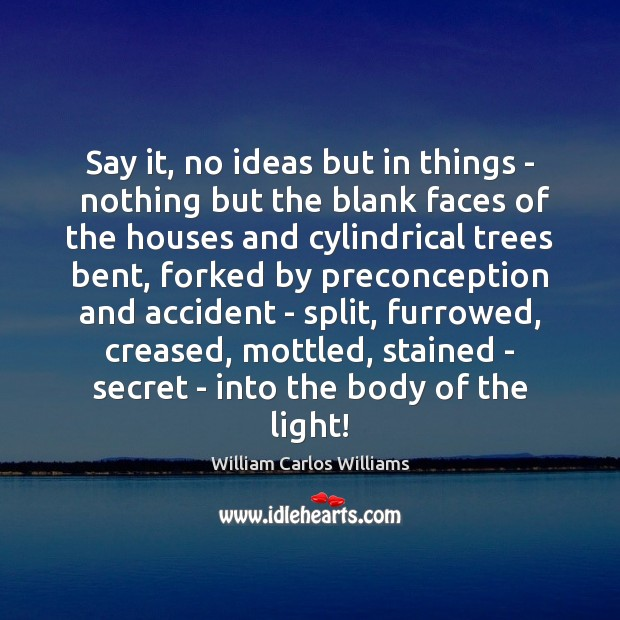 Say it, no ideas but in things –  nothing but the blank William Carlos Williams Picture Quote