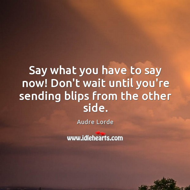 Say what you have to say now! Don't wait until you're sending blips from the other side. Audre Lorde Picture Quote
