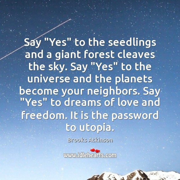 """Say """"Yes"""" to the seedlings and a giant forest cleaves the sky. Image"""
