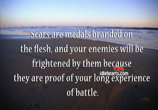 Scars Are Proof of Your Long Experience of Battle.