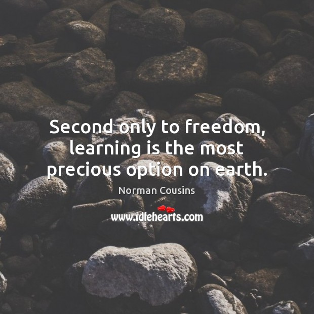 Second only to freedom, learning is the most precious option on earth. Norman Cousins Picture Quote