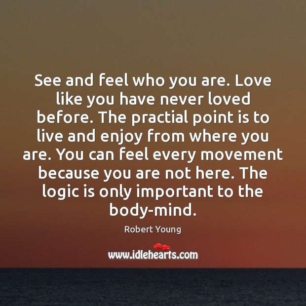 See and feel who you are. Love like you have never loved Logic Quotes Image