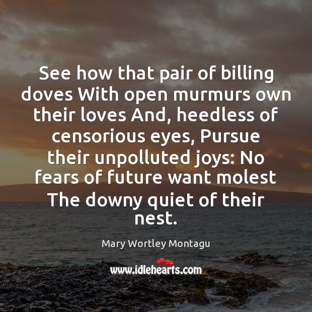 See how that pair of billing doves With open murmurs own their Mary Wortley Montagu Picture Quote